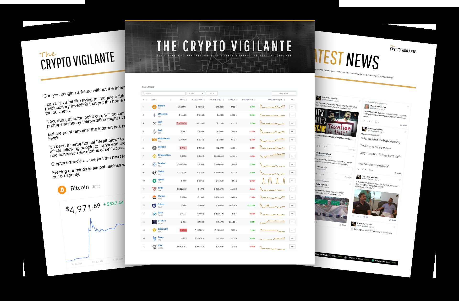 new new newsletter image